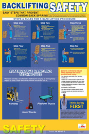Back Lifting Protection Safety Poster - Aris Industrial Back Lifting Protection Safety Poster