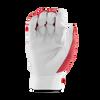 F5 Batting Gloves