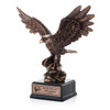 Dedication Eagle Award