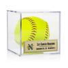 Softball Display Case