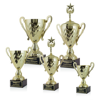 Gold Metal Cup Trophies