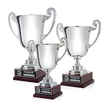 Platinum Cup Trophies