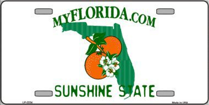 Florida State Background Blank Novelty Metal License Plate
