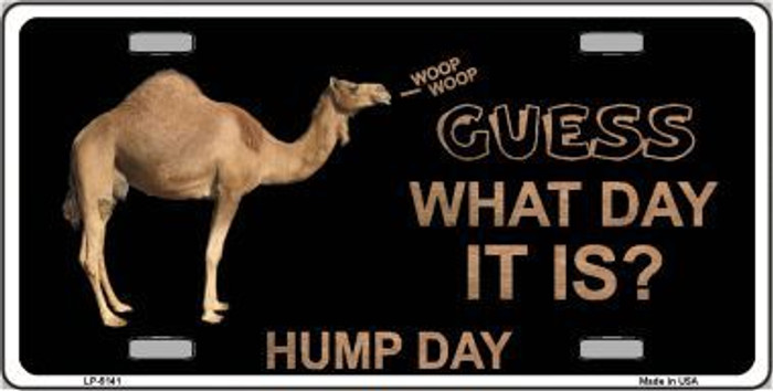 It Is Hump Day Metal Novelty License Plate LP-5141
