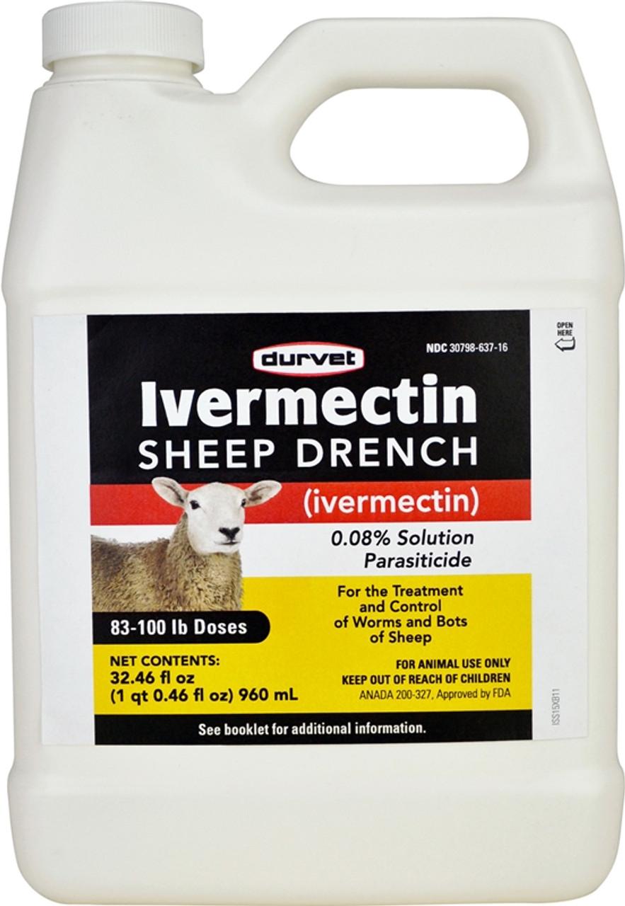 Q Drench Goat Dose Ivermectin Sheep Drenc...