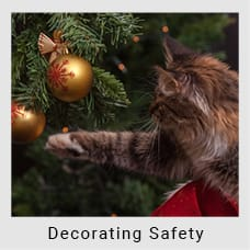Christmas Decorating Safety Guide