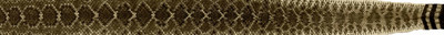 Rick Barbee-Western Diamondback Limbsations