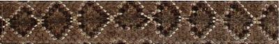 Diamondback Snake Skin