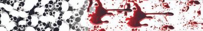 Blood Skulls-2