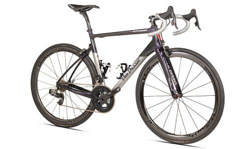 Van Dessel Motivus Maximus Campagnolo Ergo equipped Carbon Bicycle, Silver / Black / Purple - Build It Your Way