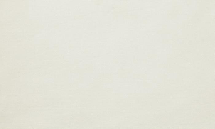 cushion - dralon white
