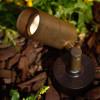 Cast Brass Side Arm Spotlight PSDX613 (in scene) Shown In Rust
