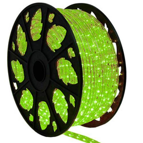 151 Ft Faux Green LED Rope Light Kit - 120V Standard IP65 Waterproof