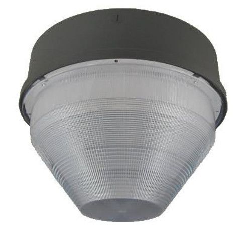 Ceiling Mount Light 37052ECFX