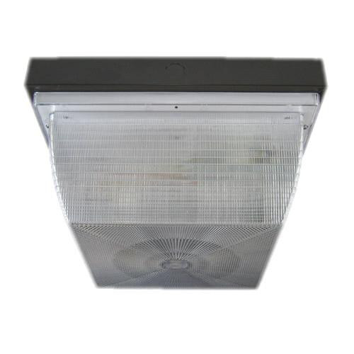200C Series Square Commercial Ceiling/Wall Light