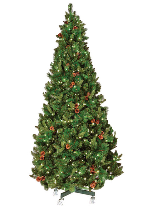 6 pre lit warm white mini led oregon pine christmas tree - Prelit Led Christmas Trees
