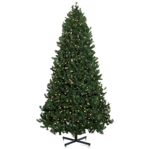 6 calgary pine pre lit led christmas tree - Prelit Led Christmas Trees