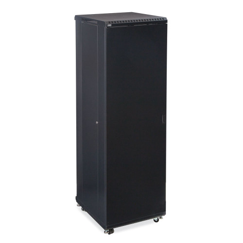 "42U LINIER Server Cabinet  With Solid Front And Rear Doors - 24"" Depth"