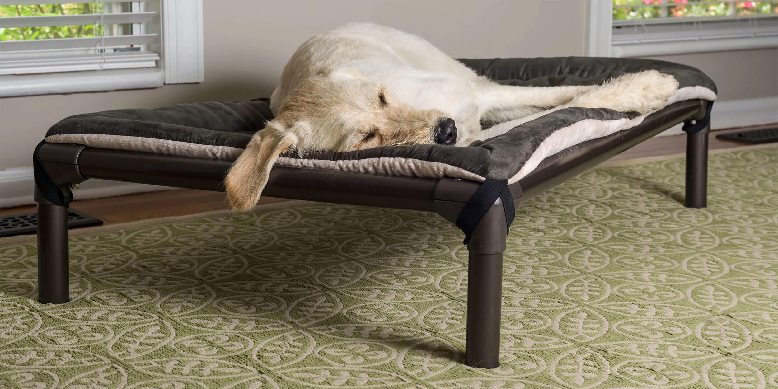 Kuranda Dog Amp Cat Beds