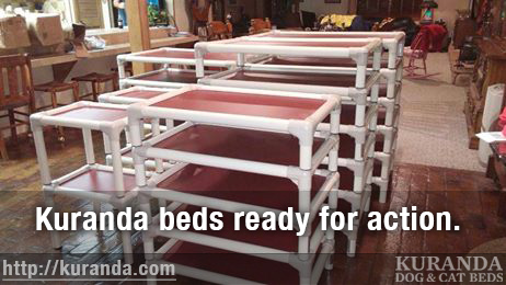 Durable Kuranda Beds