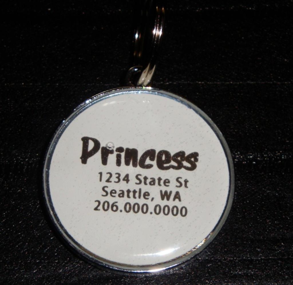 Amethyst Purple Rhinestone Pet ID Tag