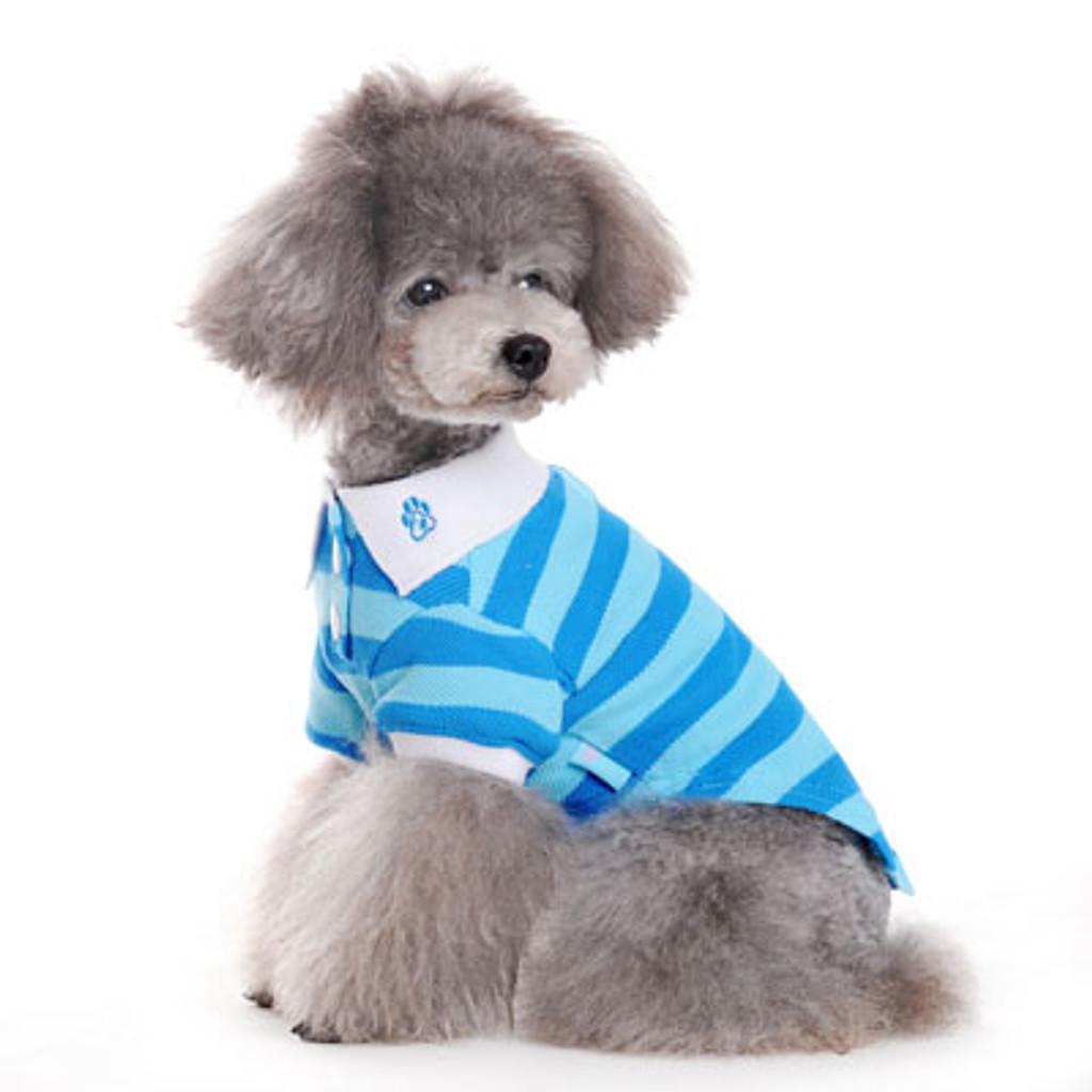 Dogo Dog Stripe Polo Shirt BLUE - Free Shipping