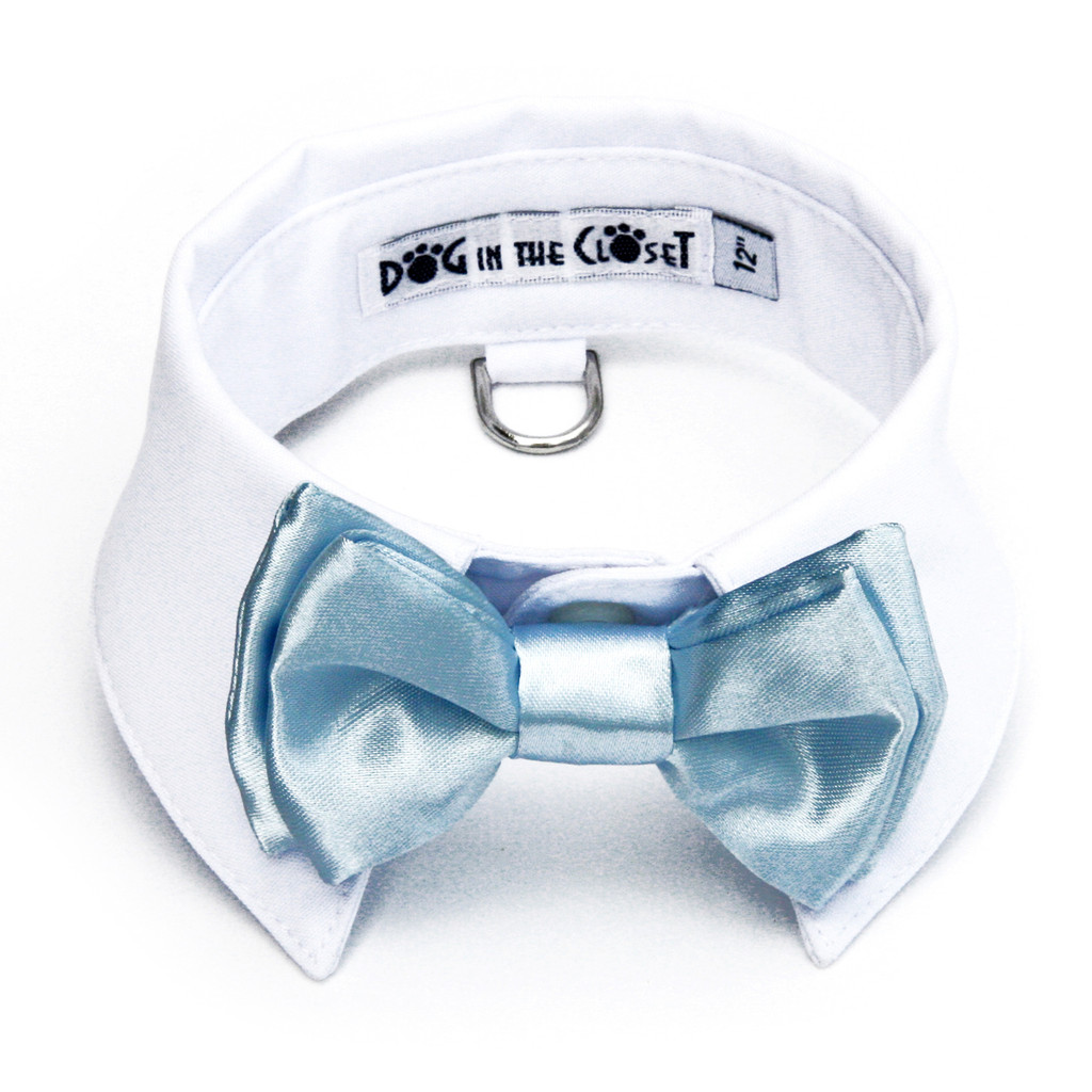 White Shirt Dog Collar with Baby Blue Bow Tie