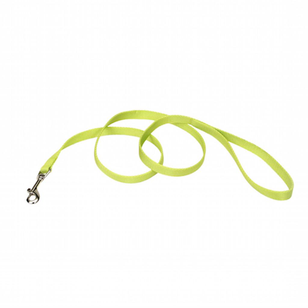 Coastal Pet Nylon Leash - Lime