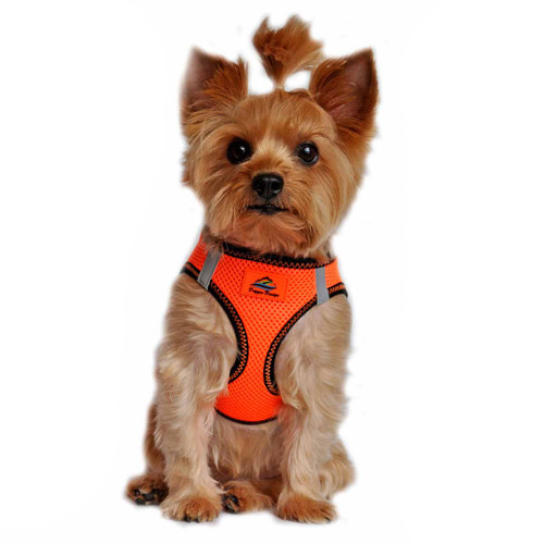 American River Dog Harness Top Stitch Collection - Iridescent Orange