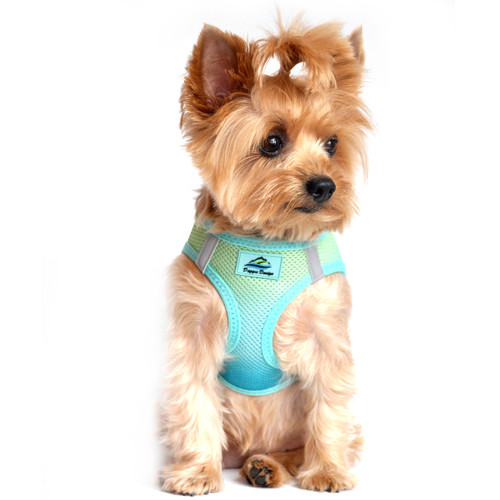American River Dog Harness Ombre Collection - Aruba Blue