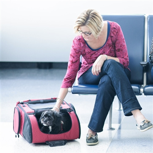 Red Geometric RC2000 Roller-Carrier for Pets up to 20 lbs.
