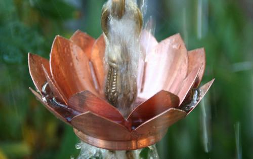 Double Lotus Copper Rain Chain