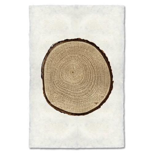 Birch Tree Ring Print