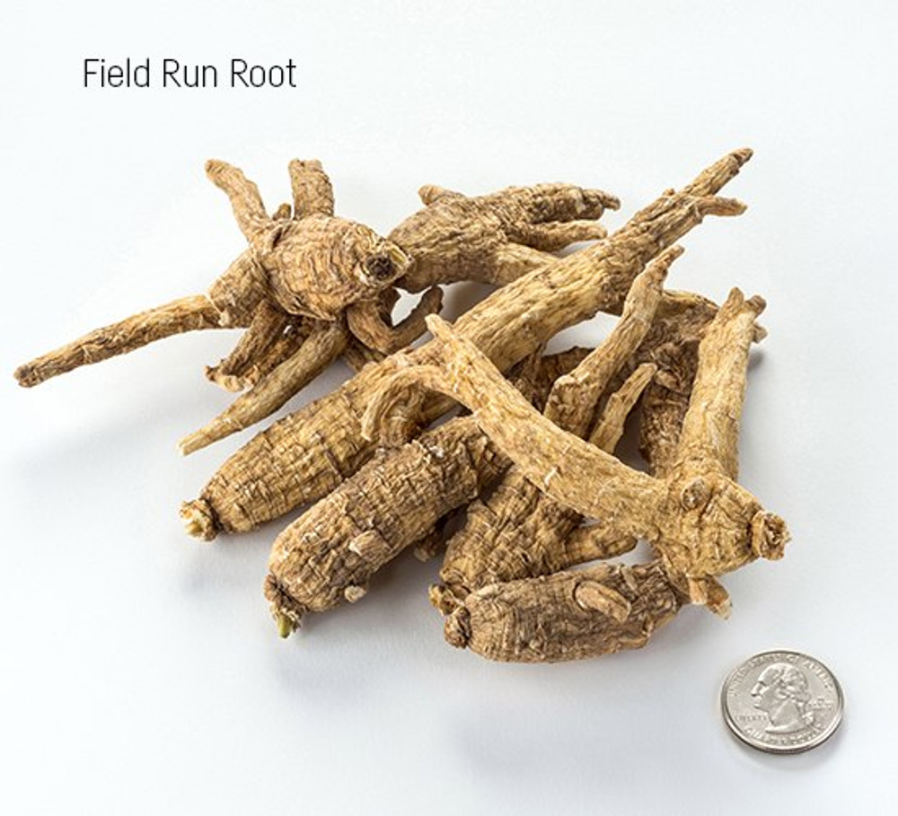 Wisconsin Field Run Root