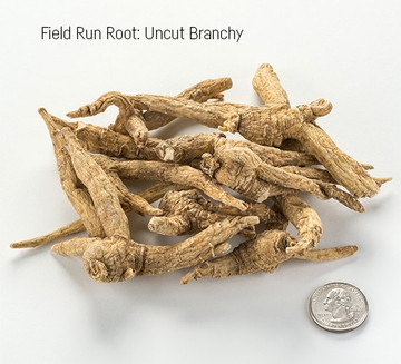 Wisconsin Uncut Branchy Ginseng