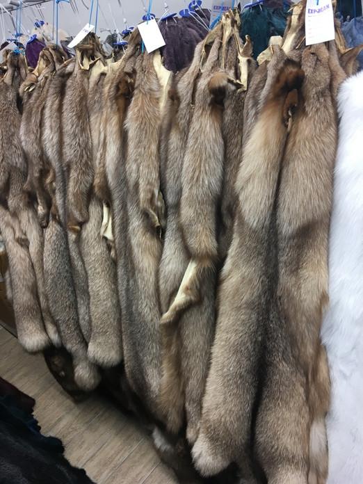 Chinchilla For Sale >> Crystal Fox fur pelts/skins - SKANDINAVIK FUR