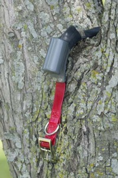 Johnson 16000 Hour with tree switch