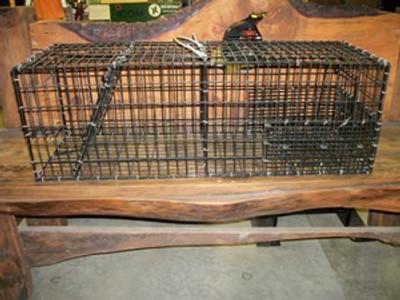 Medium Steel Rod Frame Trap