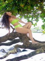Cromwells Bandeau Bikini Top  Customize Size & Choose from 50+ Fabrics