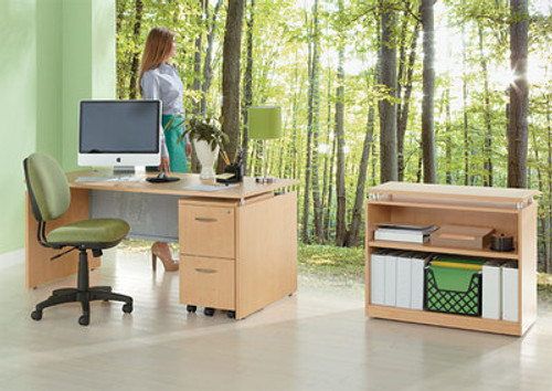 3pc Modern Contemporary Executive Office Desk Set, #AL-SED-D4
