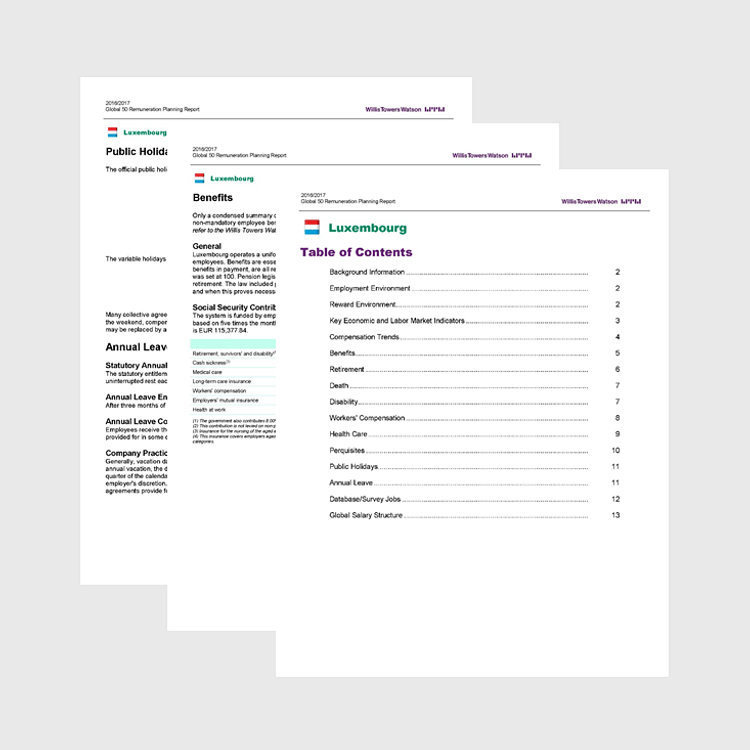 Product image for the 2018 - 2019 Global 50 Remuneration Planning Report