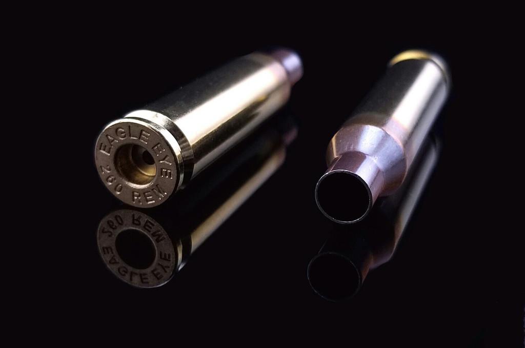 Eagle Eye Precision Match 260 Rem Unprimed Brass Cases Two Horizontal