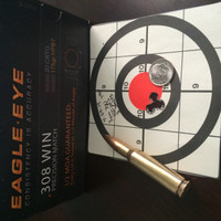 Eagle Eye Precision 308 Win 3-Shot User Target.