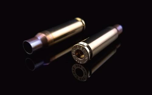 Eagle Eye Precision 308 Win Unprimed Match Cases Two Horizontal