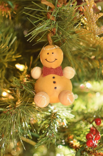 Meadowbrooke Gourds- Winter Gingerbread Man Ornament