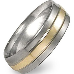 Raised Titanium and Gold Band