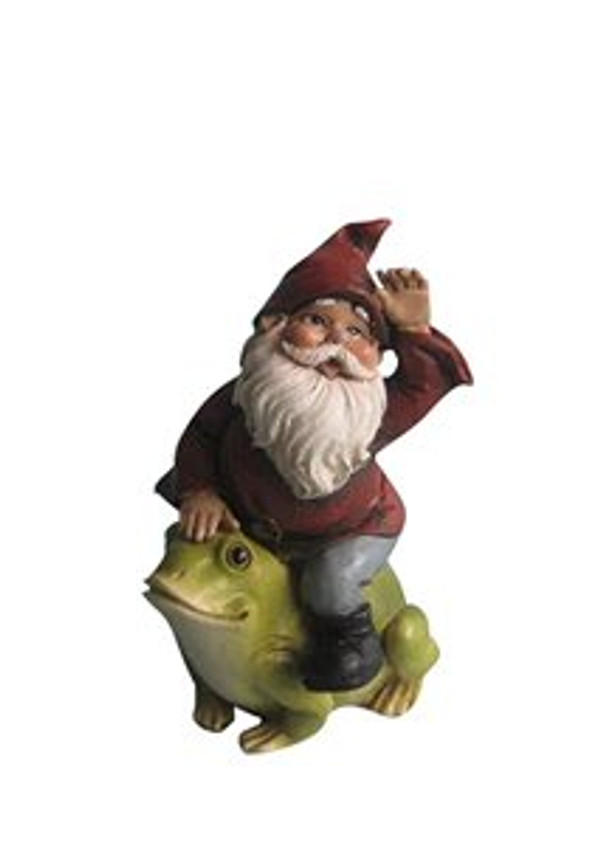 Gnome Riding Frog