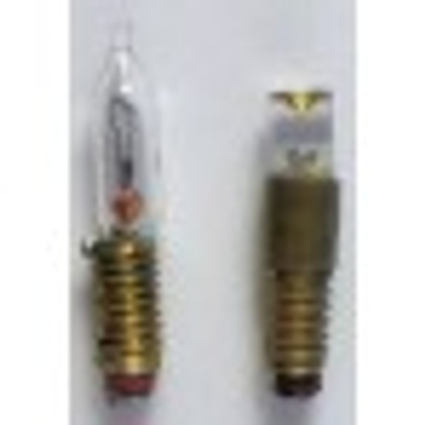 This photo shows the LED bulb on the right.  The bulb on the left is the incandescent flame tip bulb that this bulb can be used to replace.
