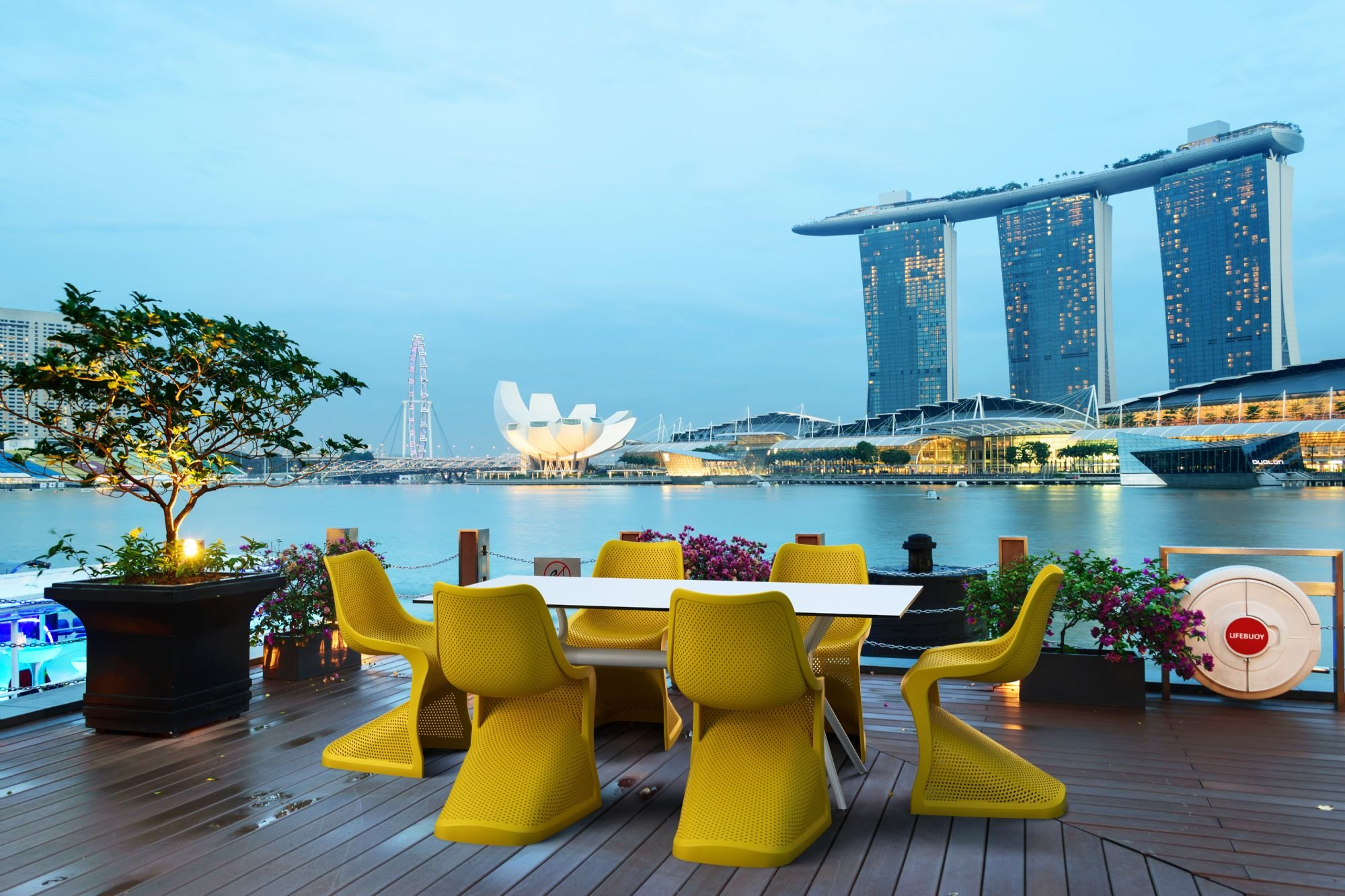 Bloom dining chairs in Singapore