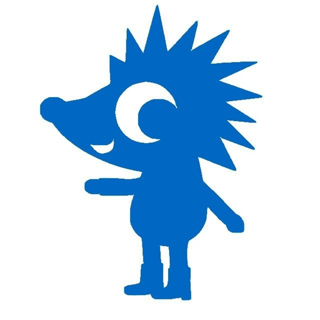 Hedgehog: Iron On Transfer
